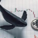«Кити» переводять біткоіни на біржі