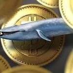 Біткоіни-кит, який продав біткоіни по $ 58 000, купив 3521 BTC під час падіння курсу