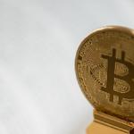 Браян Нельсон буде приділяти особливу увагу правилам регулювання ринку криптовалют