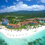 Ямайка анонсувала випробування свого токена