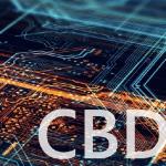 Центробанк Нігерії для розгортання CBDC взяв в партнери Bitt Inc