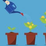 ЗМІ: Paradigm створить венчурний фонд для інвестицій в криптостартапи